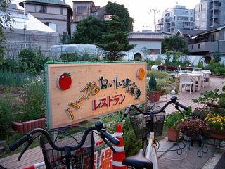 お楽しみレストラン おすすめベスト3