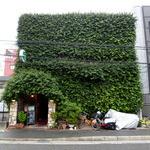 フードライター団田芳子さんのオススメ「一度は食べたい!お値打ちランチ」